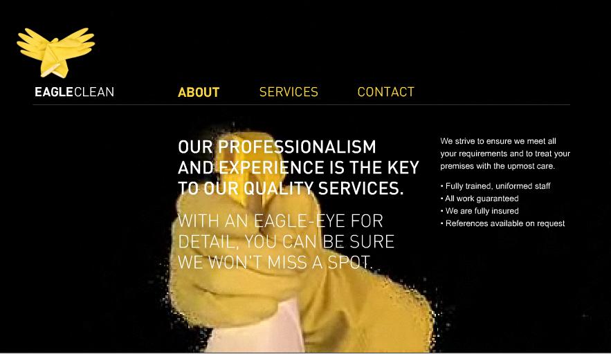 Eagle Clean Website Design
