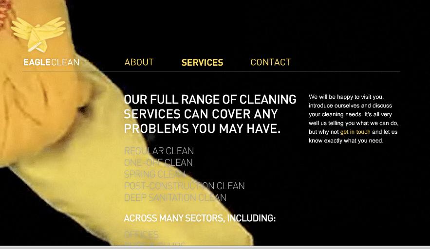 eagle-clean-web-2