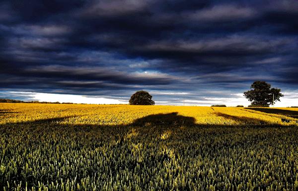 Landscape Belinda McCarthy Photography